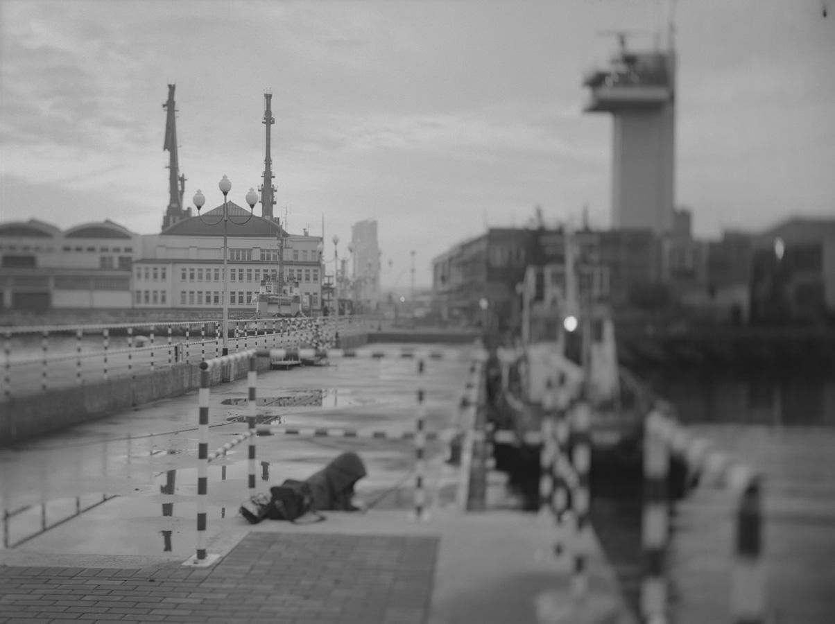 zerek_dworzec morski (2)