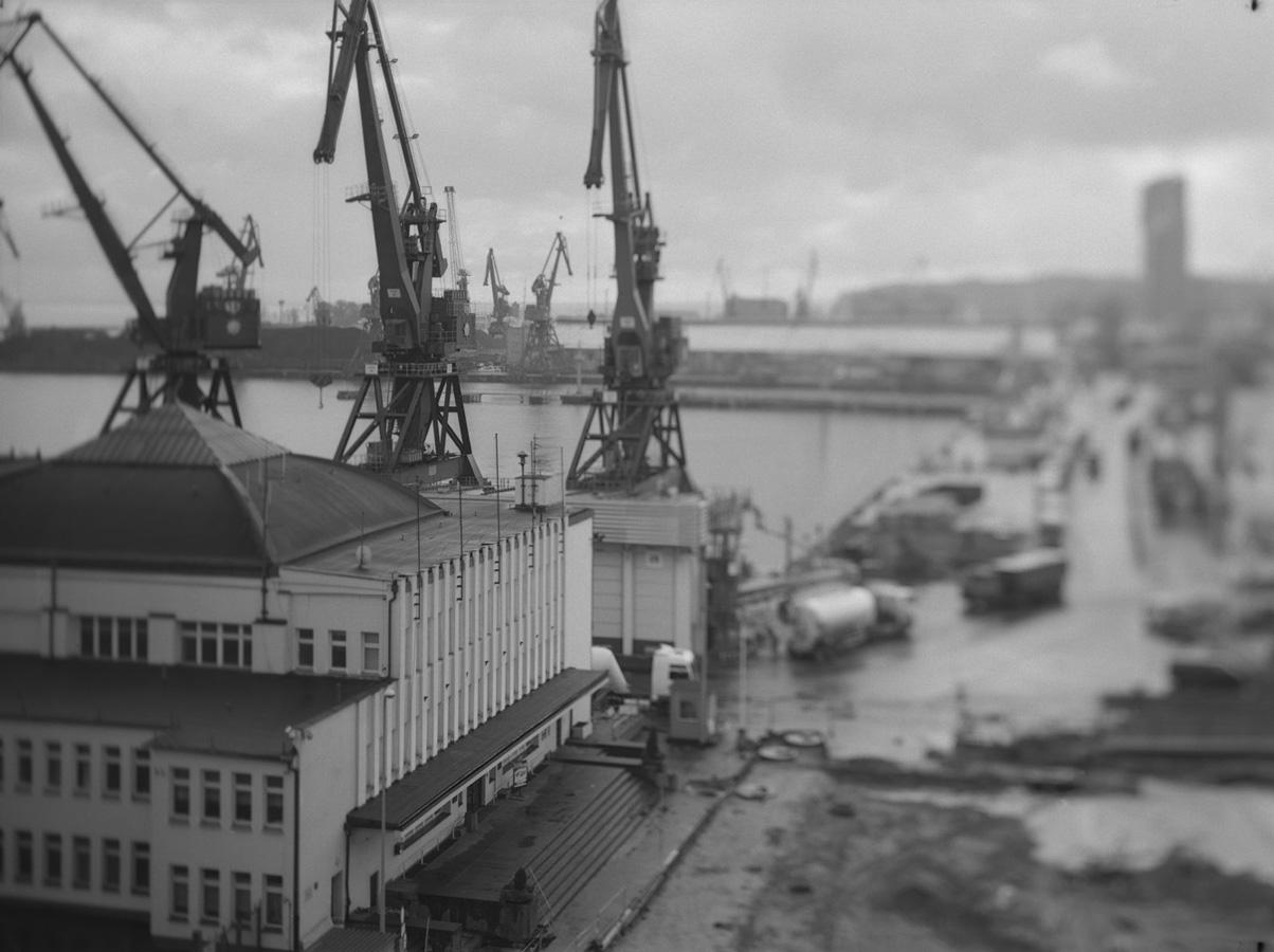 zerek_dworzec morski (2a)