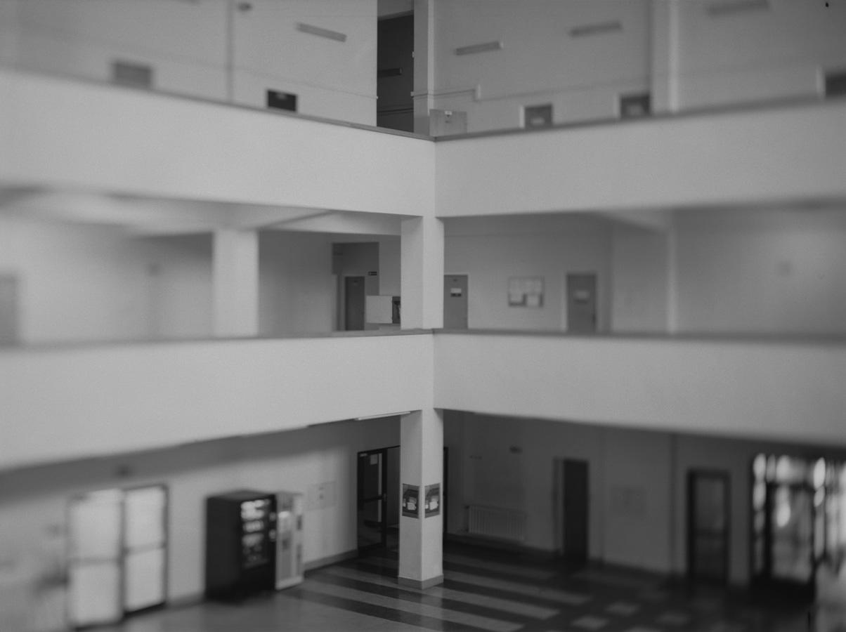 zerek_dworzec morski (2d)