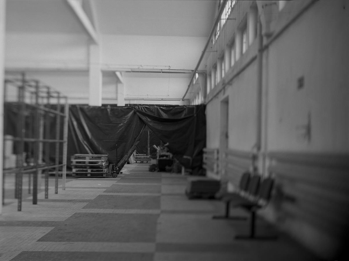zerek_dworzec morski (3)